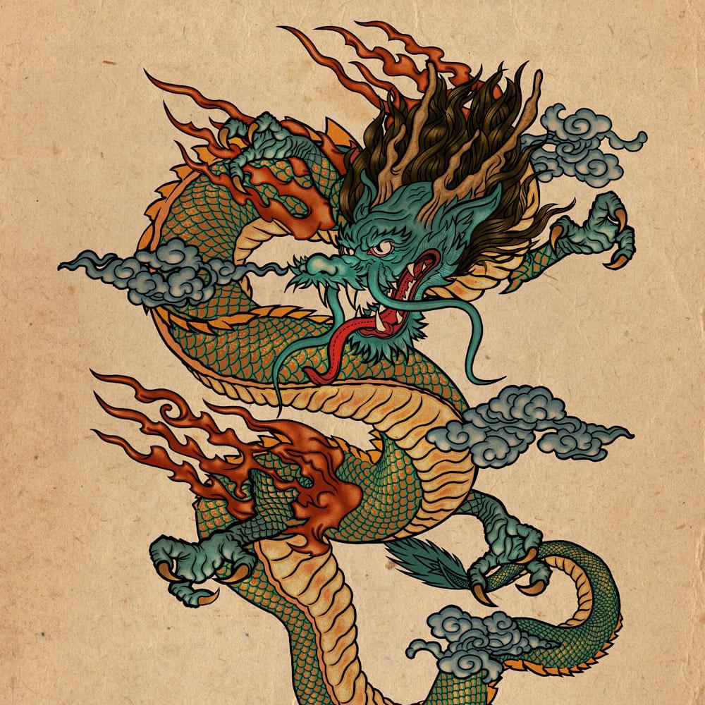 illustration dragon